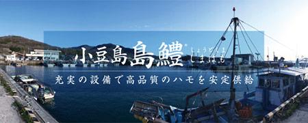 小豆島島鱧とは